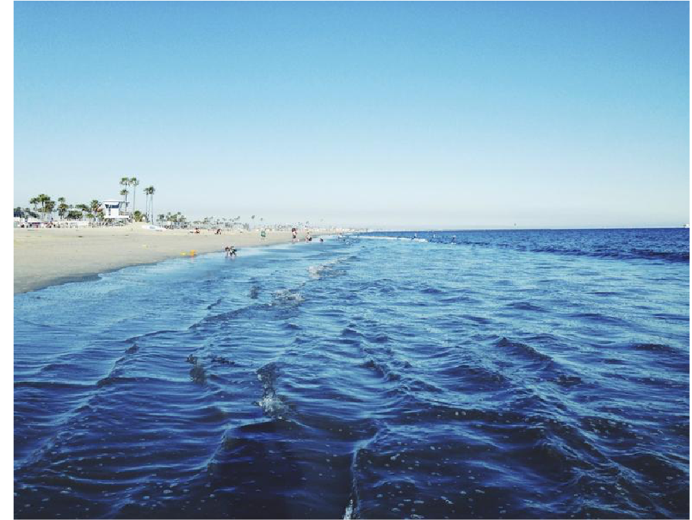 the shore@2x